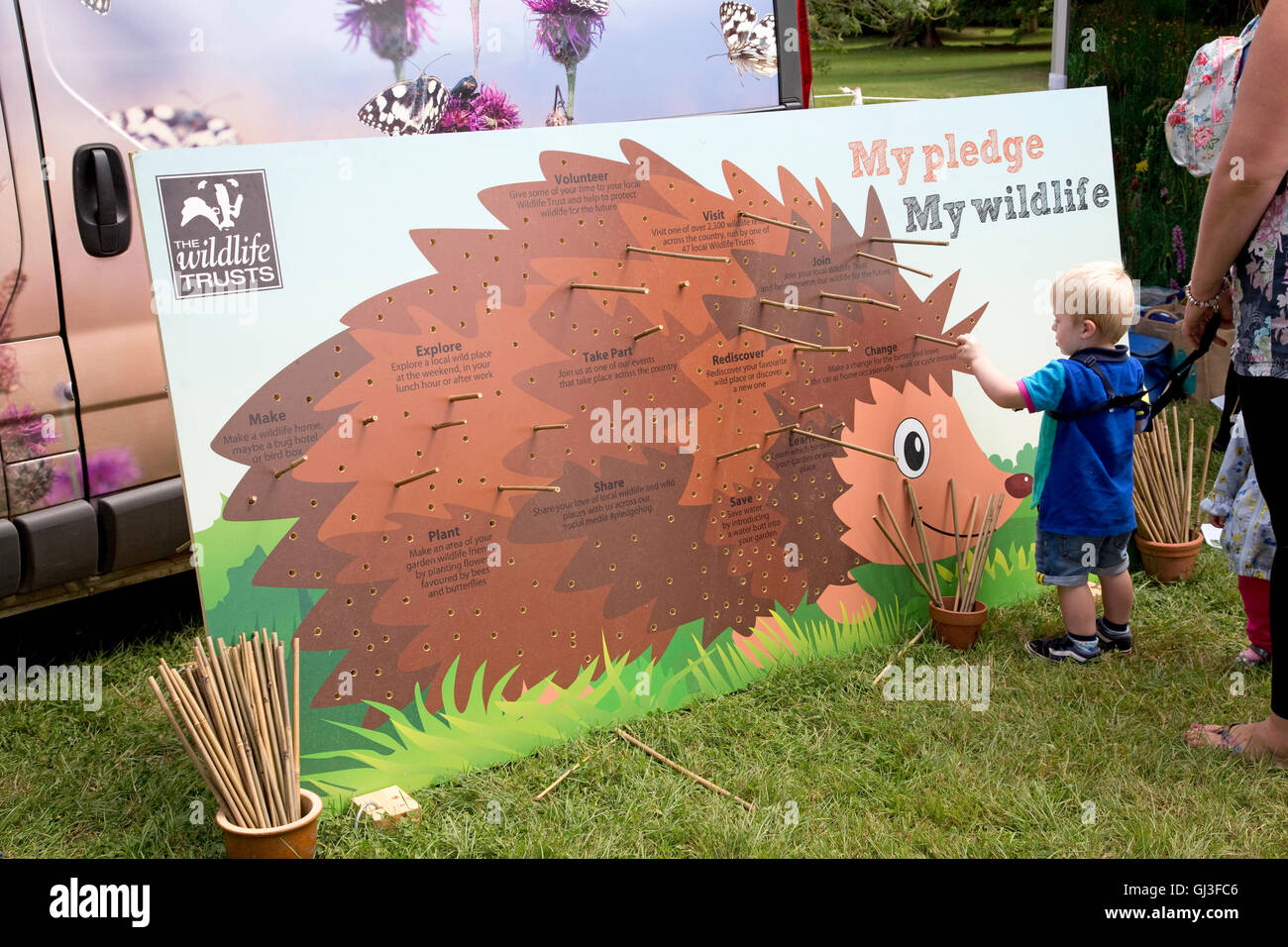 Young boy making wildlife pledge in pin board depicting giant hedgehog to change for the better Countryfile Live - Stock Image