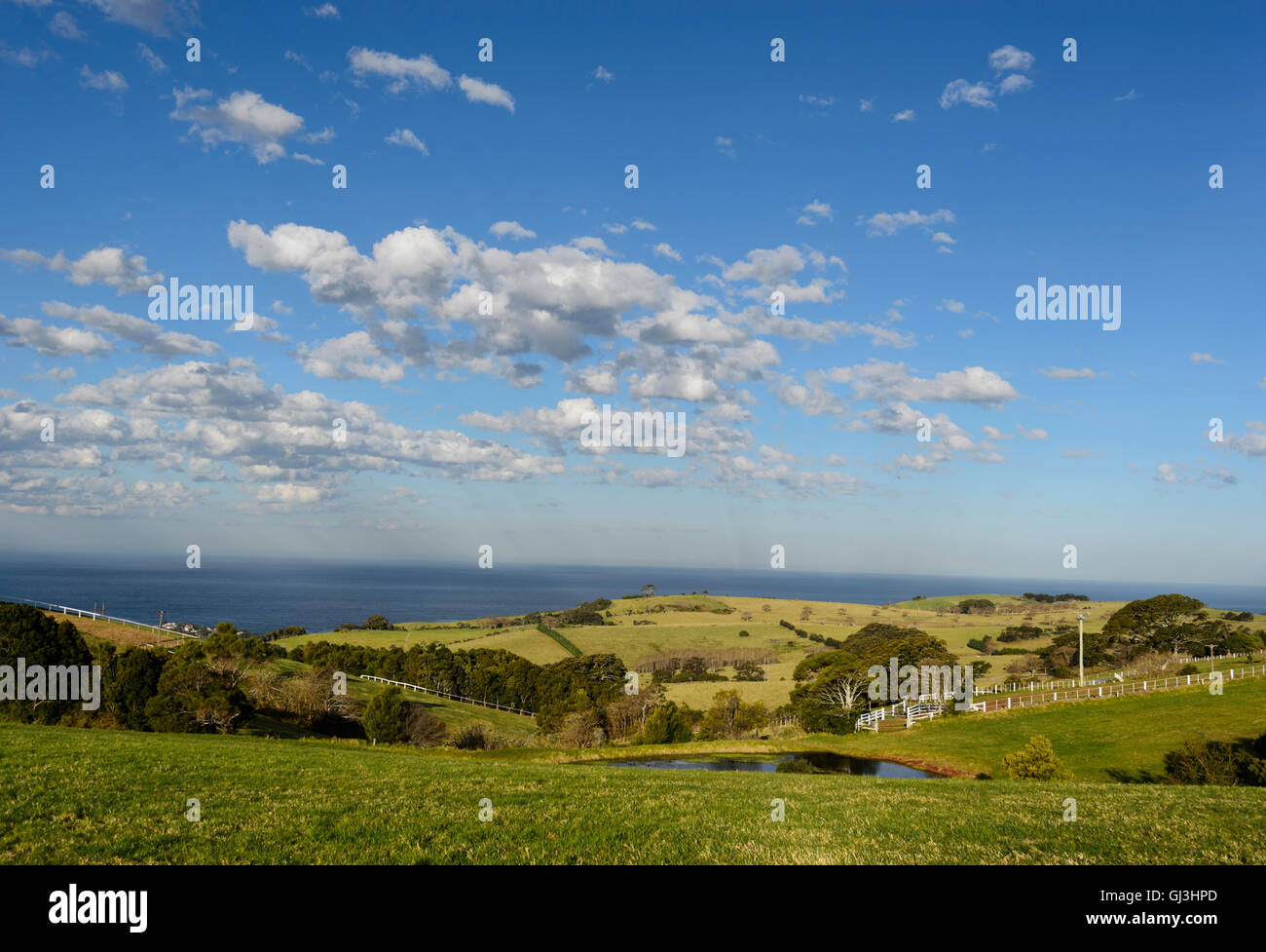 View of green pastures in the rolling countryside above Kiama, Illawarra Coast, New South Wales, NSW, Australia - Stock Image