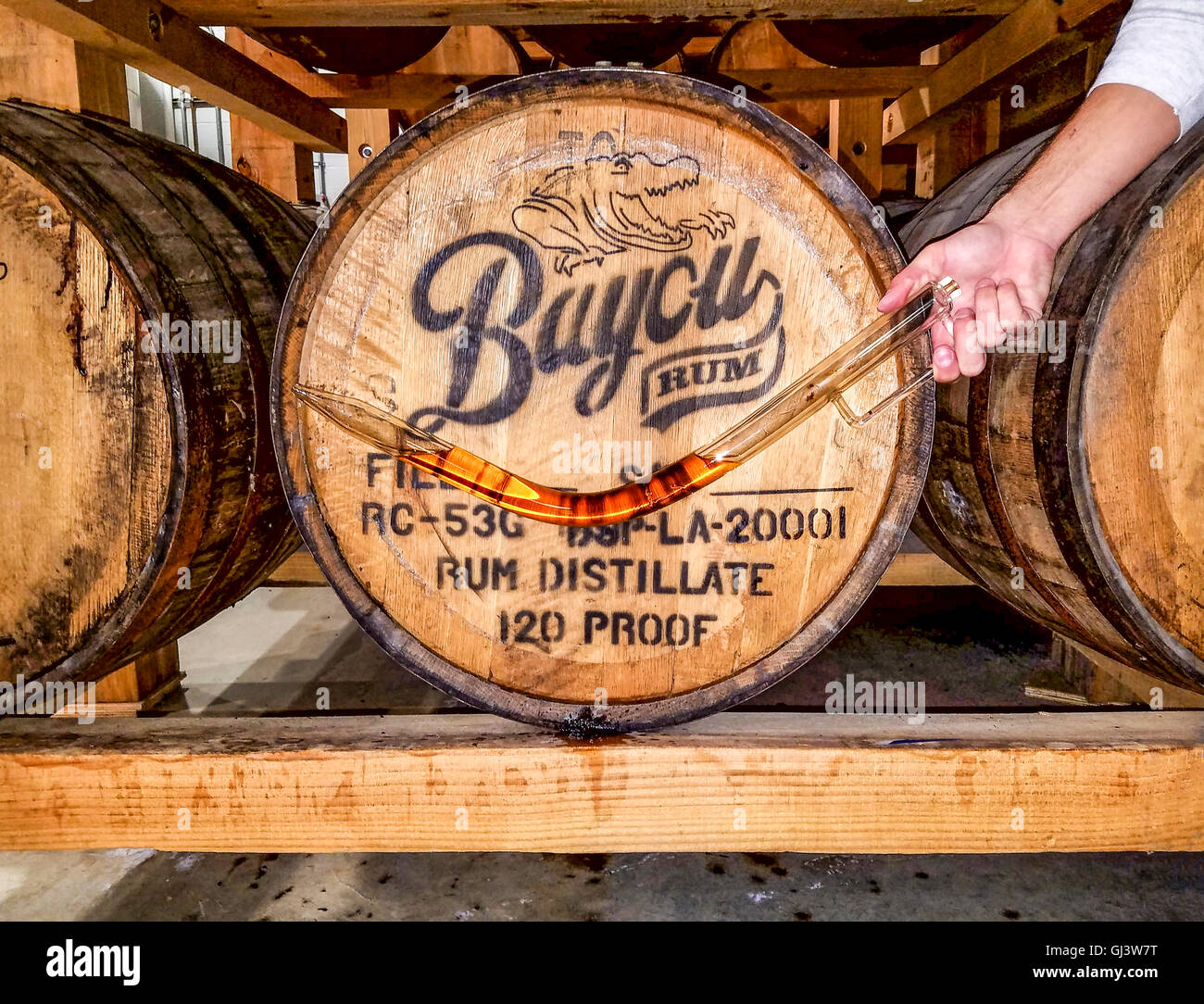 Man holds a device used to siphon rum from oak barrels to see how aging is developing. The device is a 'thief.' - Stock Image