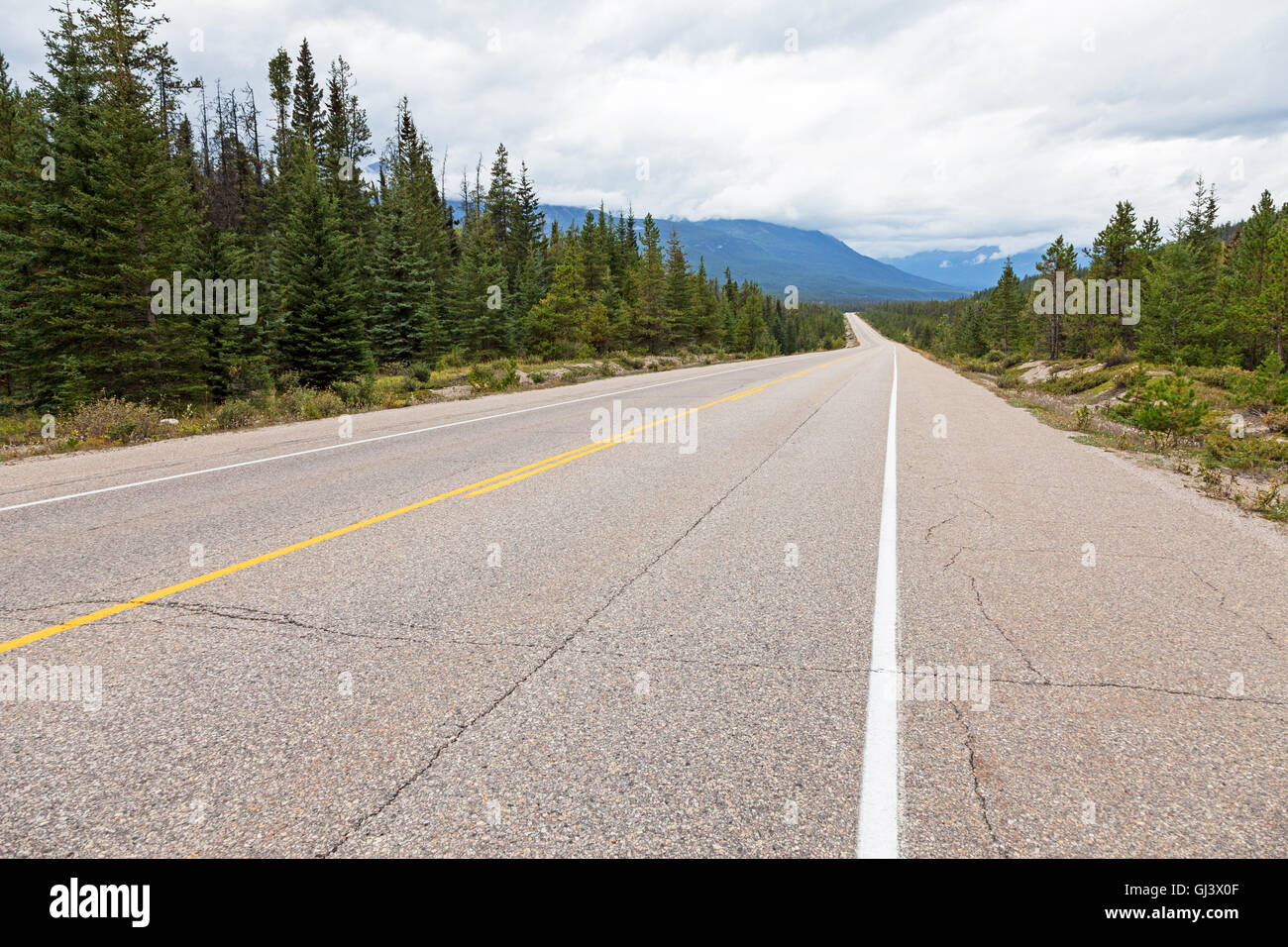 A deserted road Highway 93 also called the Icefields Parkway between Lake Louise and Jasper Alberta Canada - Stock Image
