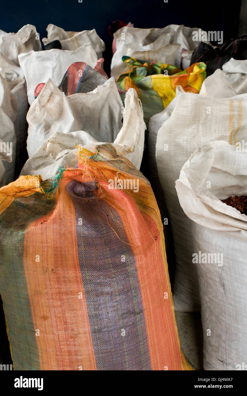 Cocoa bean bags in Peru - Stock Image