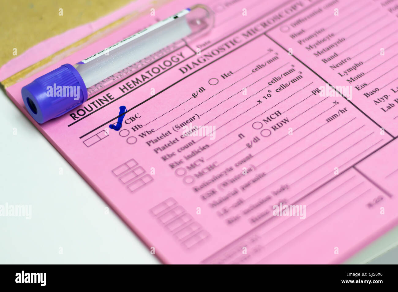 Test tube on request form in laboratory - Stock Image