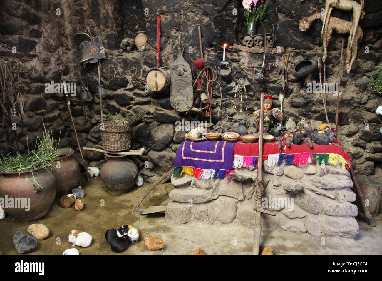 Traditional Peruvian primitive dwelling, with dried mud floor, guinea pigs (for food). religious altar - Stock Image