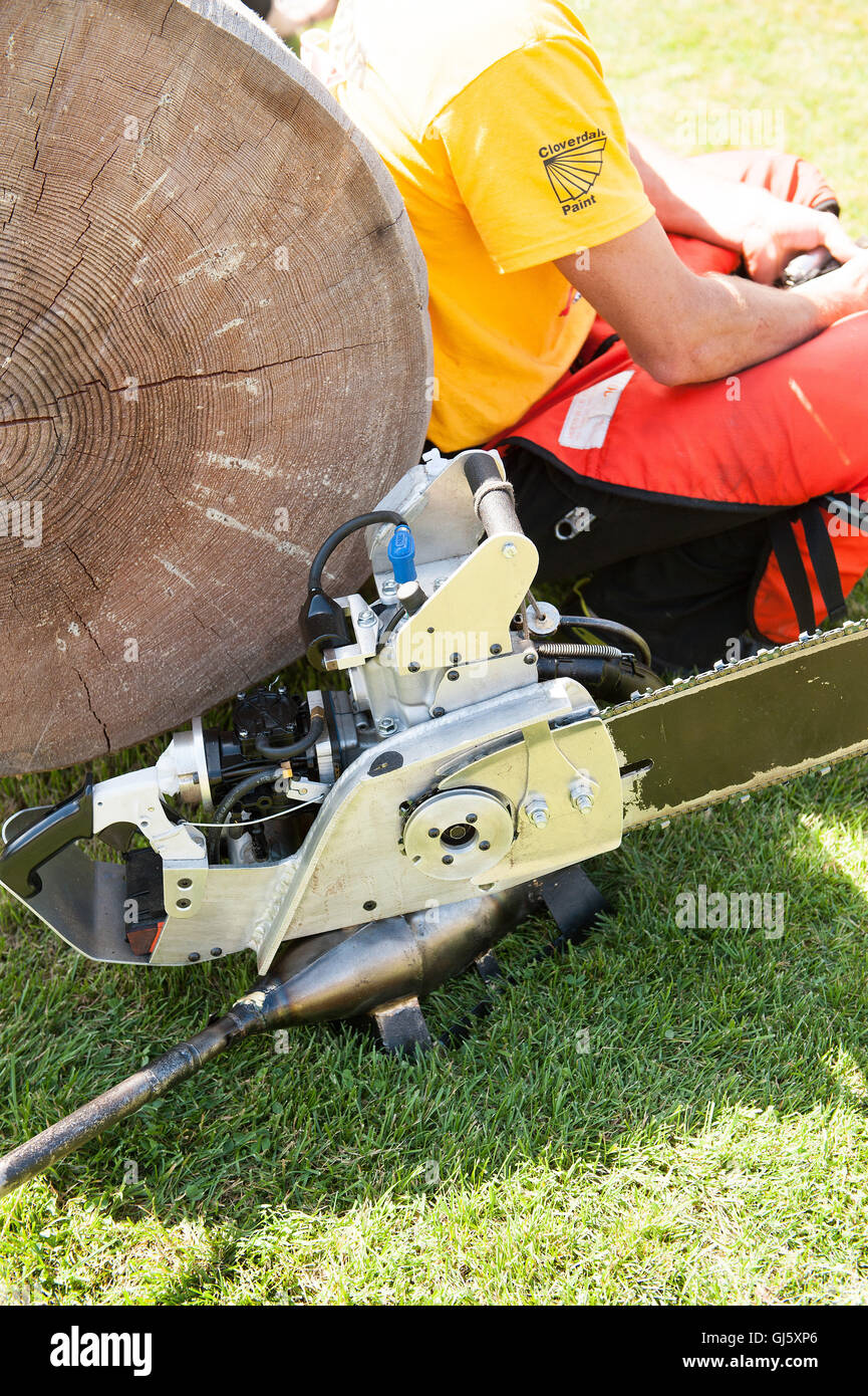 Jesse Whitehead's custom chainsaw pro to the open speed bucking event.  The Squamish Loggers Day Loggers Sports - Stock Image