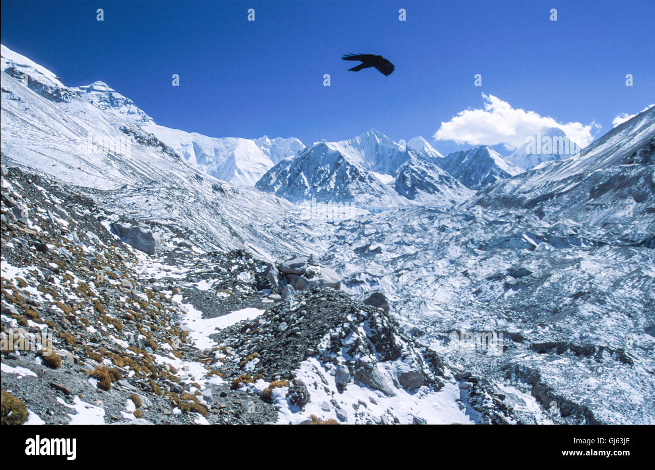 The Rongbuk Glacier with Pumori mountain in the clouds top right and Mount Everest (8,848 metres) top left. - Stock Image