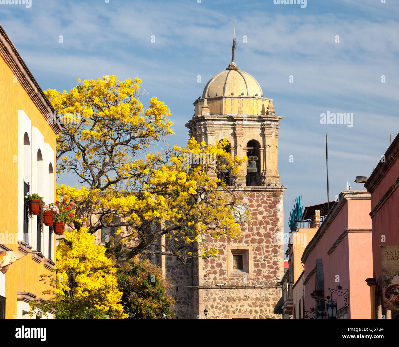 Church tower and buildings in tranquil Tequila, Jalisco, Mexico. - Stock Image