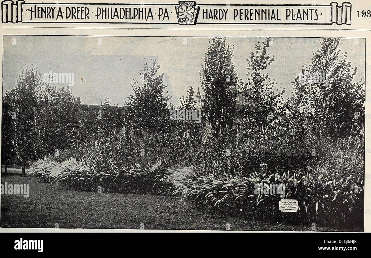 Dreer's garden book 1918 (1918) Stock Photo