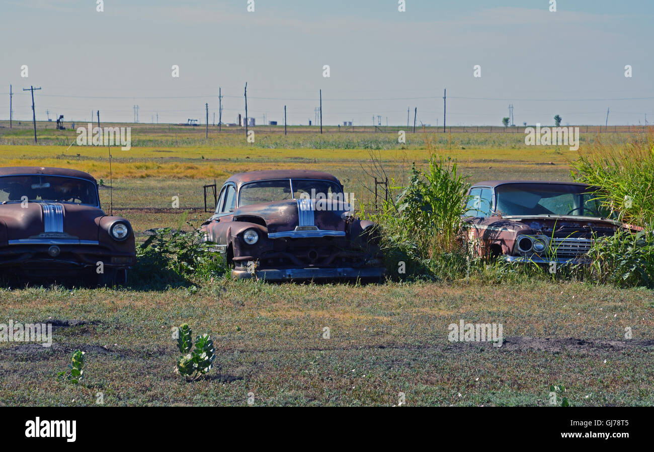 Old Cars In A Field Stock Photos & Old Cars In A Field Stock Images ...