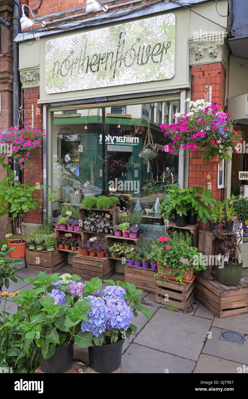 Northern Flower, florist shop, 58 Tib St, Northern Quarter, Manchester , North West England, UK, M4 1LG - Stock Image
