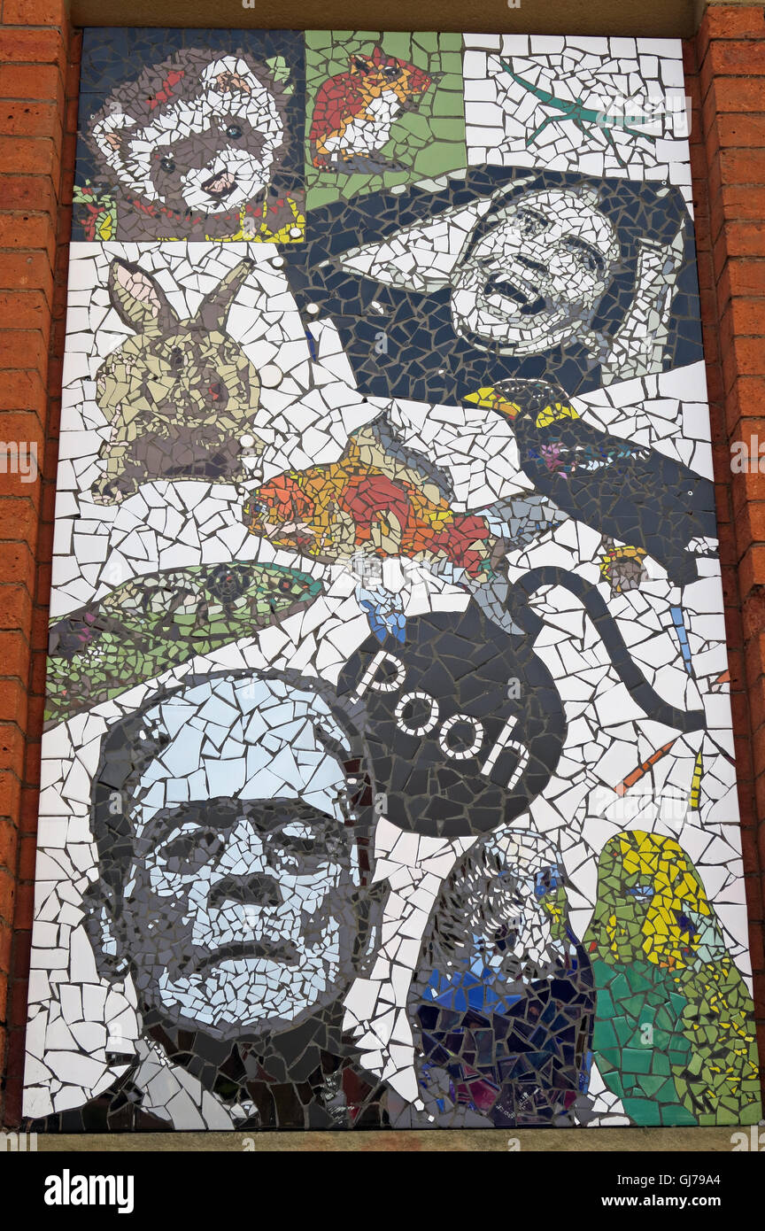 Afflecks Palace Manchester Pooh mosaic Pet shops of Tib St - Stock Image