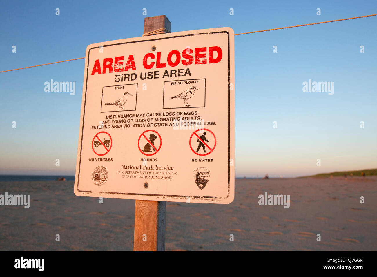 Wildlife preservation, Race Point Beach, Provincetown, Cape Cod, Massachusetts - Stock Image