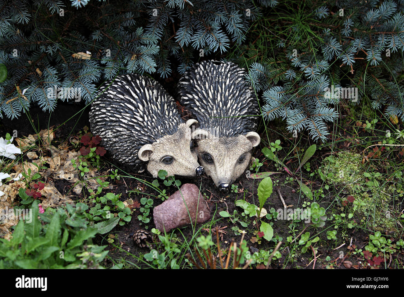 Garden - The figures of hedgehogs in love introduced in landscaping. - Stock Image