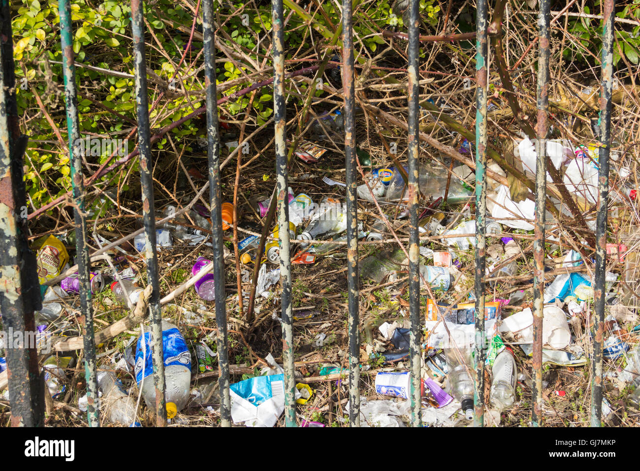 Large amounts of litter spread over an area of spare ground behind an iron fence in north west England. - Stock Image