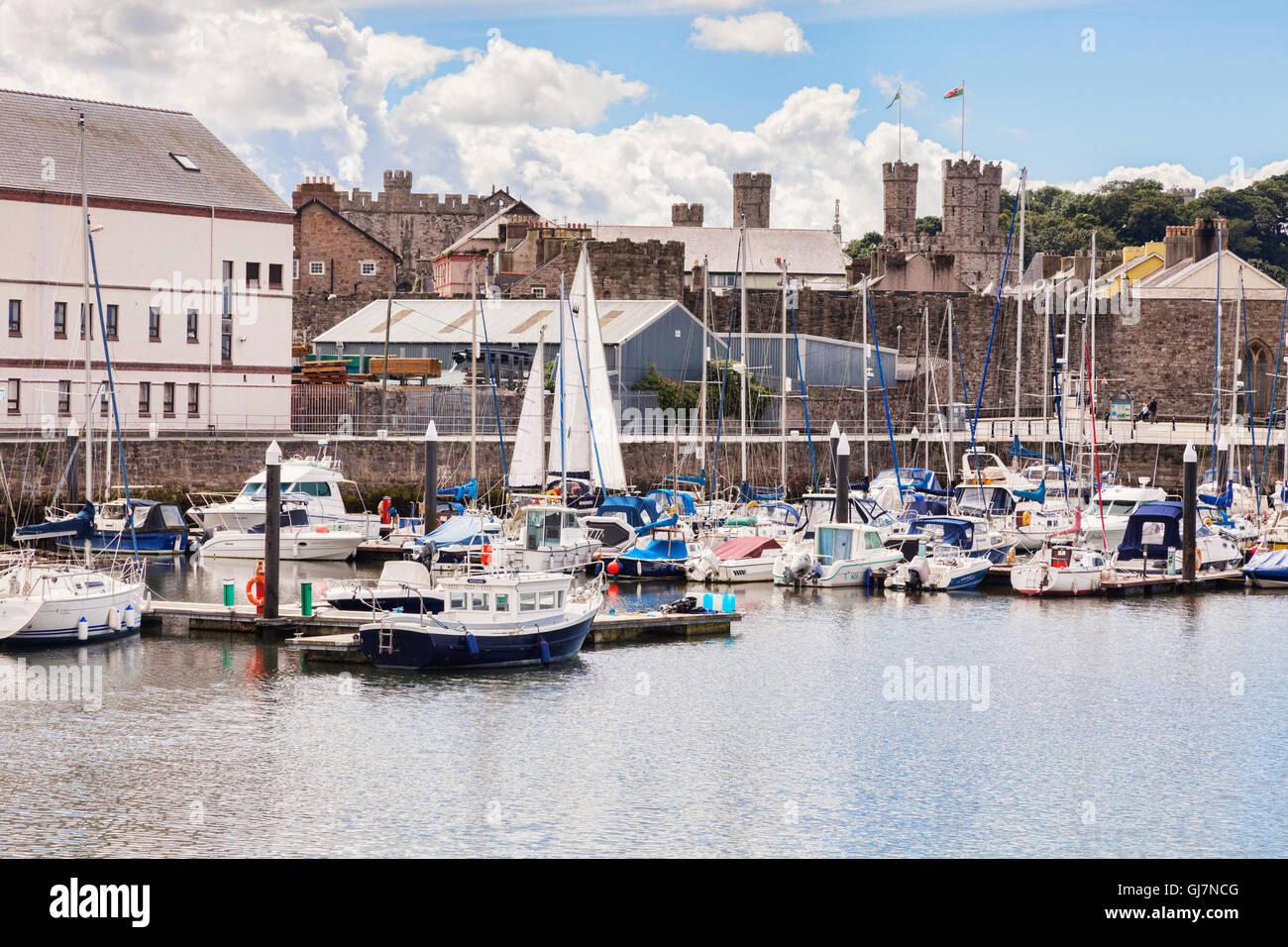 Victoria Dock, Caernarfon, Gwynedd, Wales, UK - Stock Image