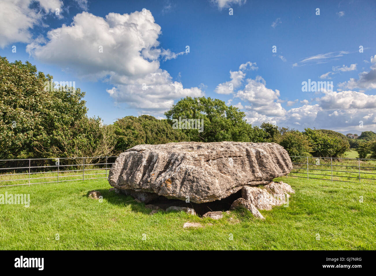 Lligwy Burial Chamber, Anglesey, Wales, UK. - Stock Image