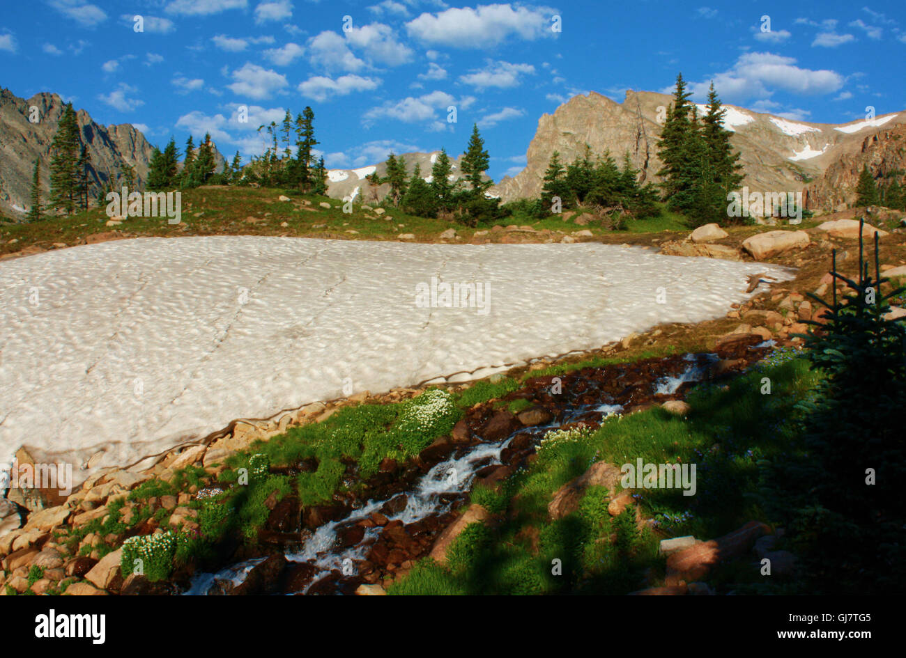 Snowfield and mountain stream near Pawnee Pass in Colorado. - Stock Image