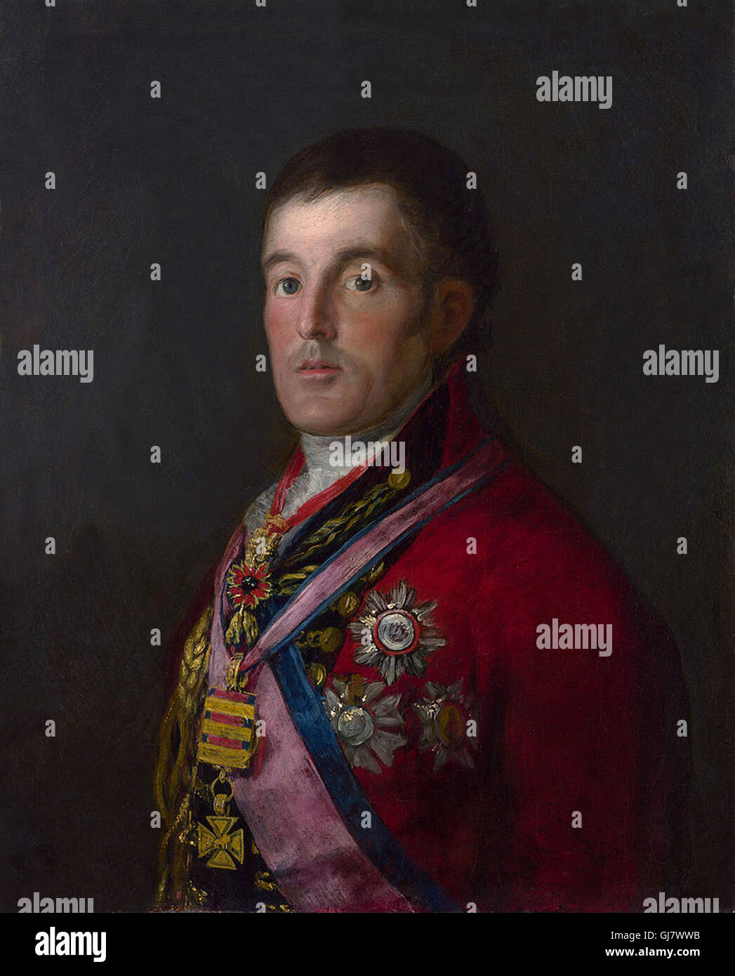 Field Marshal Arthur Wellesley the 1st Duke of Wellington wearing field marshal's uniform. Portrait by Francisco Stock Photo