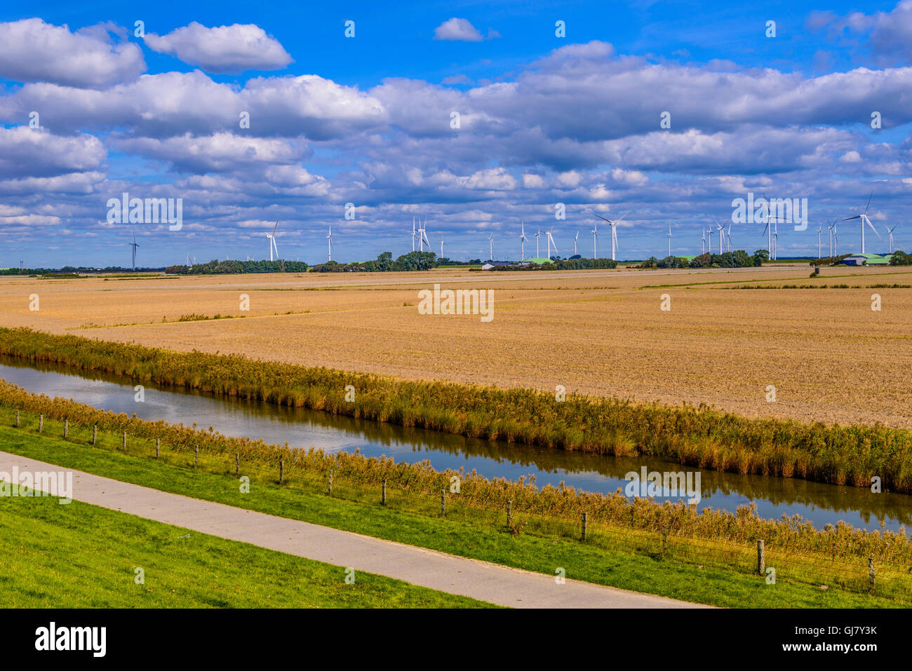 Germany, Schleswig-Holstein, North Frisia, North Frisian marsh Stock ...
