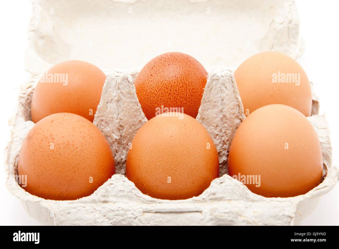 six brown organic eggs in a box - Stock Image