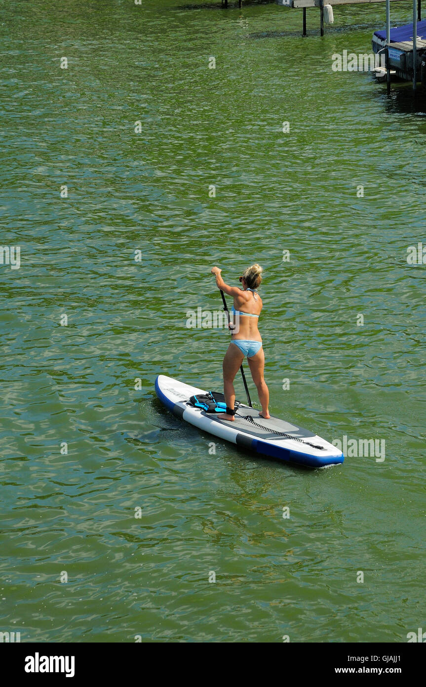 Physically fit woman on paddle board - Stock Image