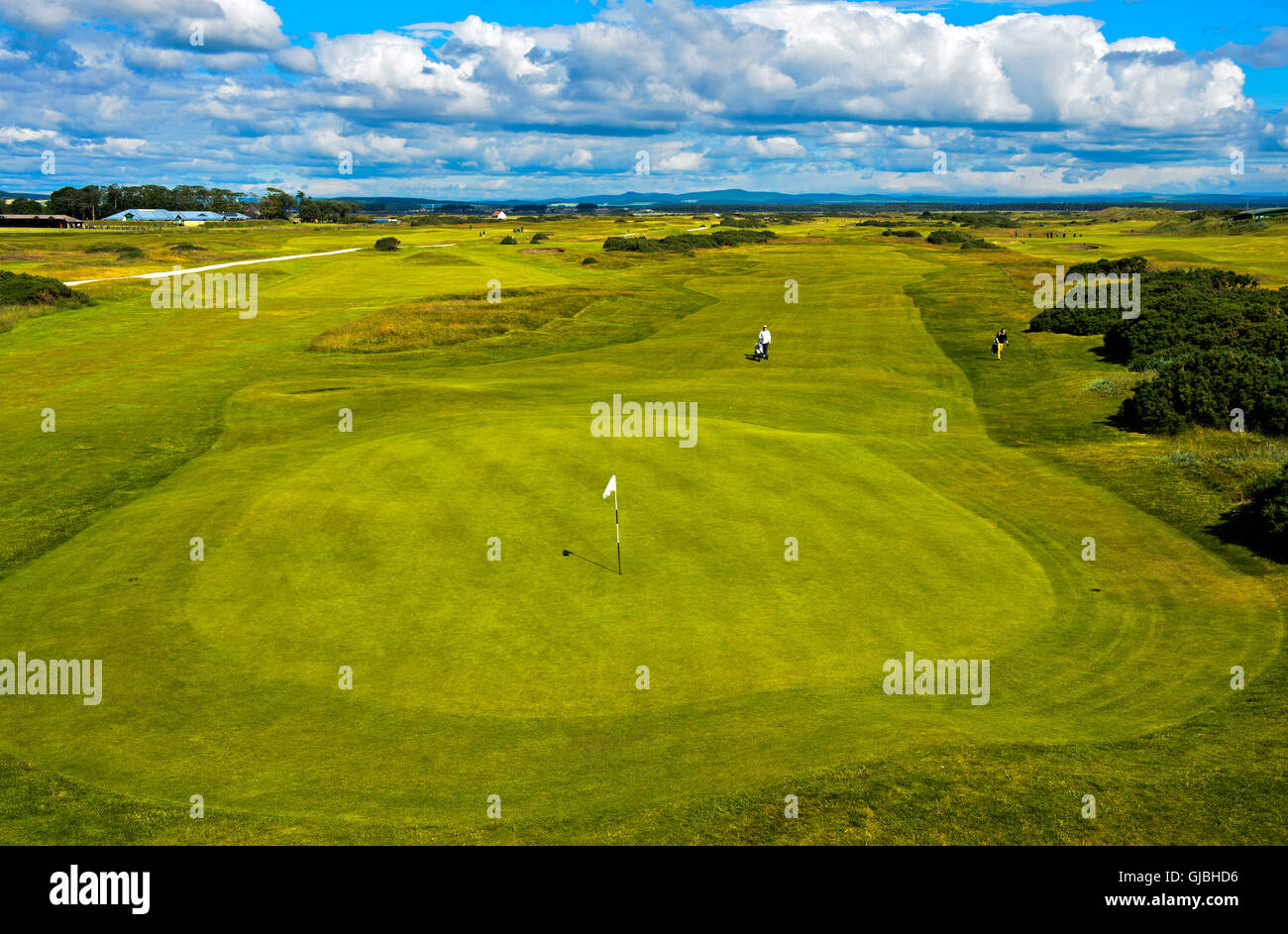 Putting green with flagstick on a golf course, Golf course St Andrews Links, St Andrews, Fife, Scotland, Great Britain - Stock Image