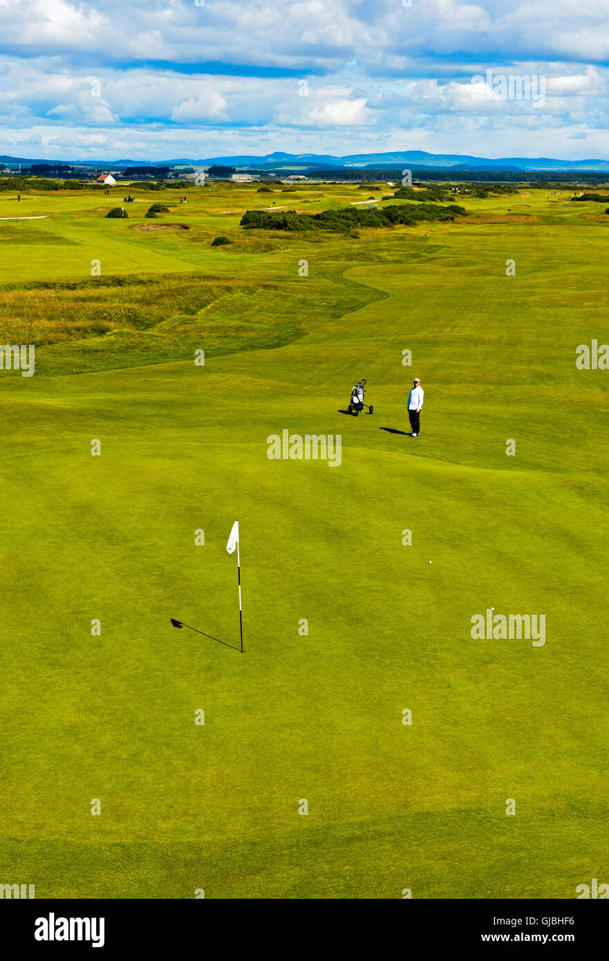Two golf players on the putting green on a golf course, Golf course St Andrews Links, St Andrews, Fife, Scotland, - Stock Image