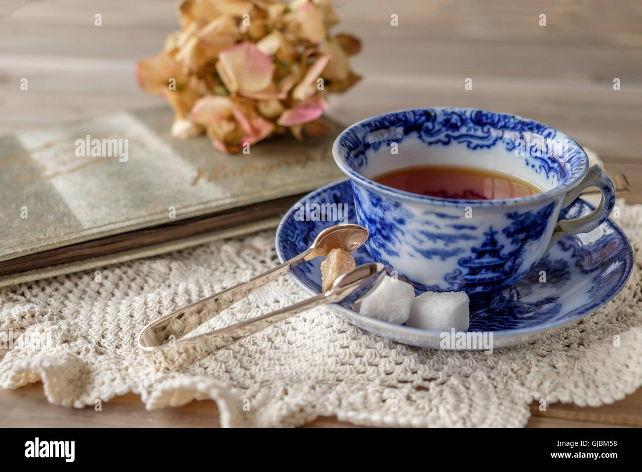 Nostalgic scene of tea in antique blue and white china cup and saucer with brown and white sugar cubes and tongs - Stock Image