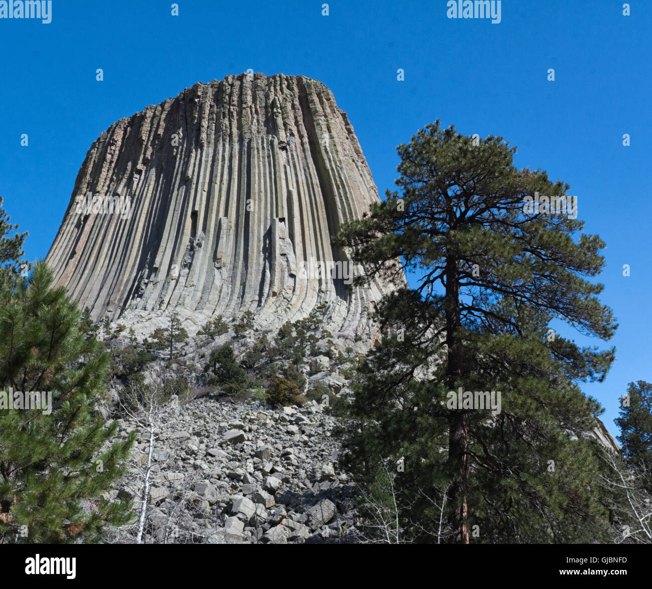 The grooves of granite reach up the side of Devil's Tower. - Stock Image