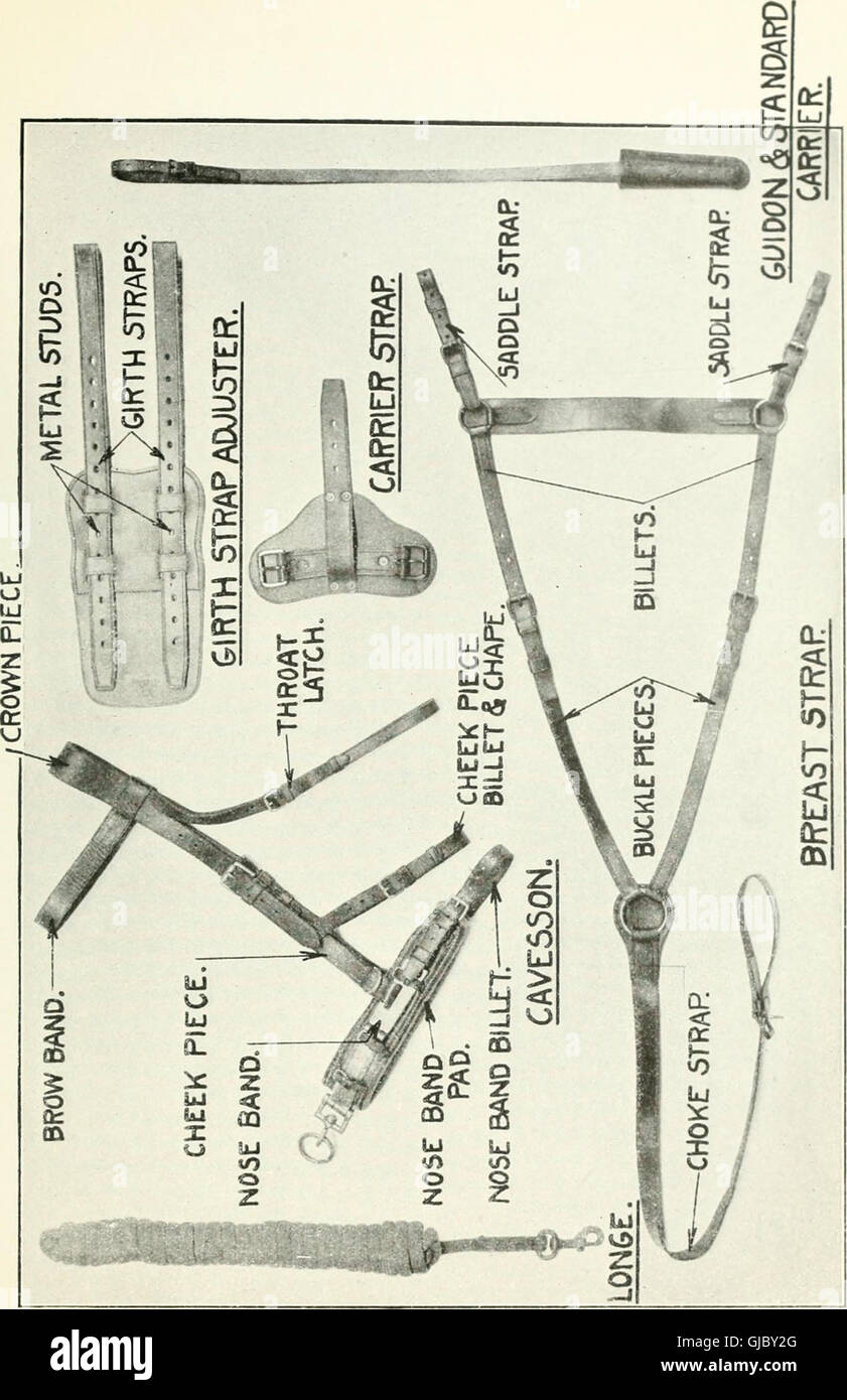 Description and directions for the use and care of cavalry equipment, model of 1912 Oct. 5, 1914 (1918) - Stock Image