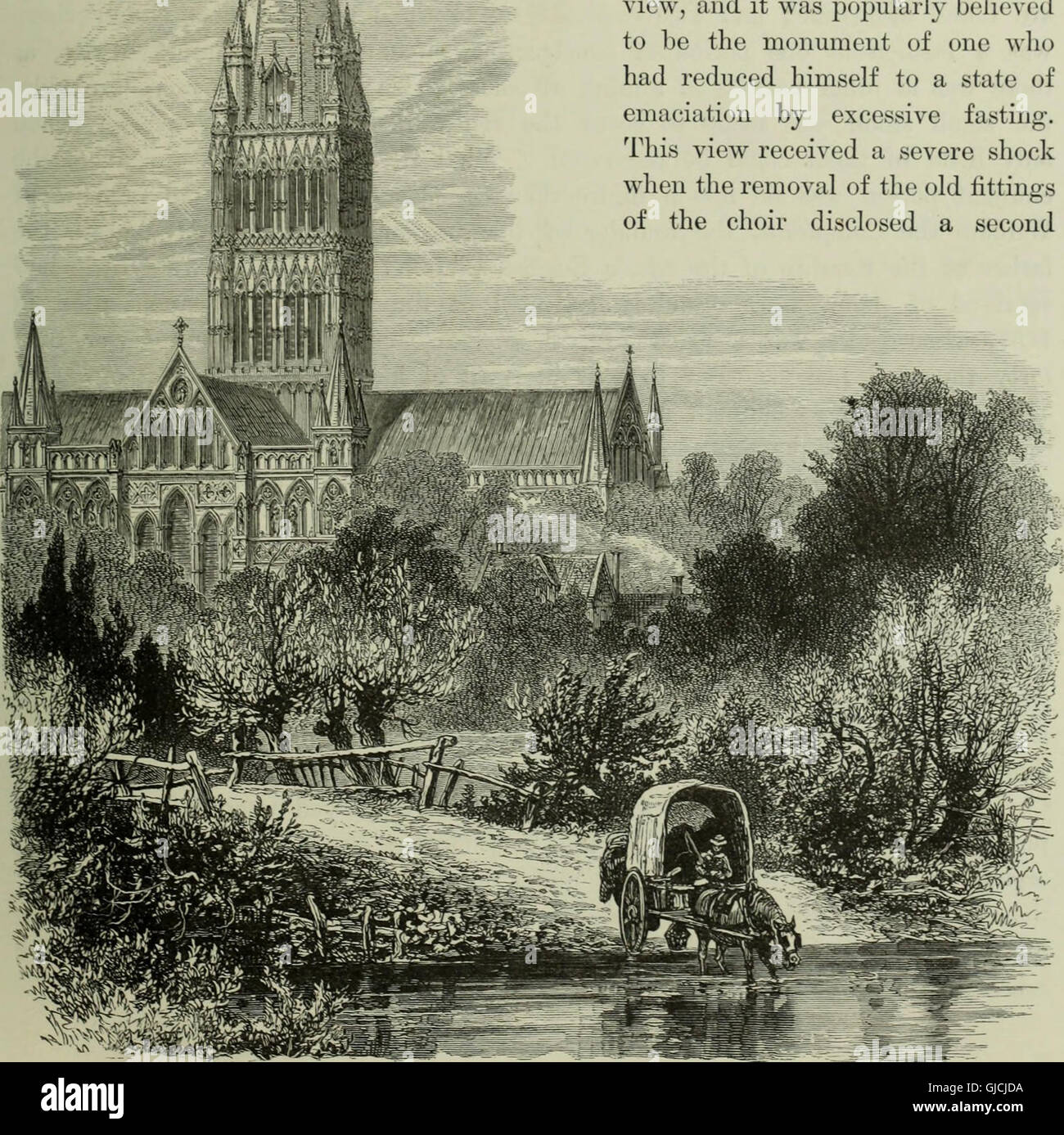 Cathedrals, abbeys and churches of England and Wales, descriptive, historical, pictorial (1896) Stock Photo