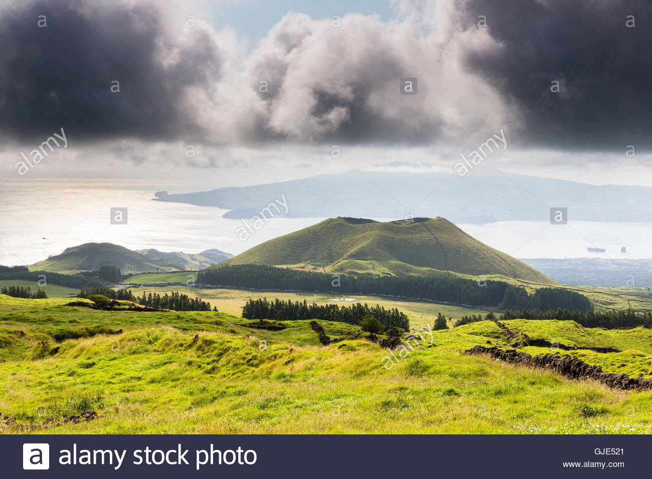 Pastureland and Vulcano hill in front the Island of Faial - Stock Image