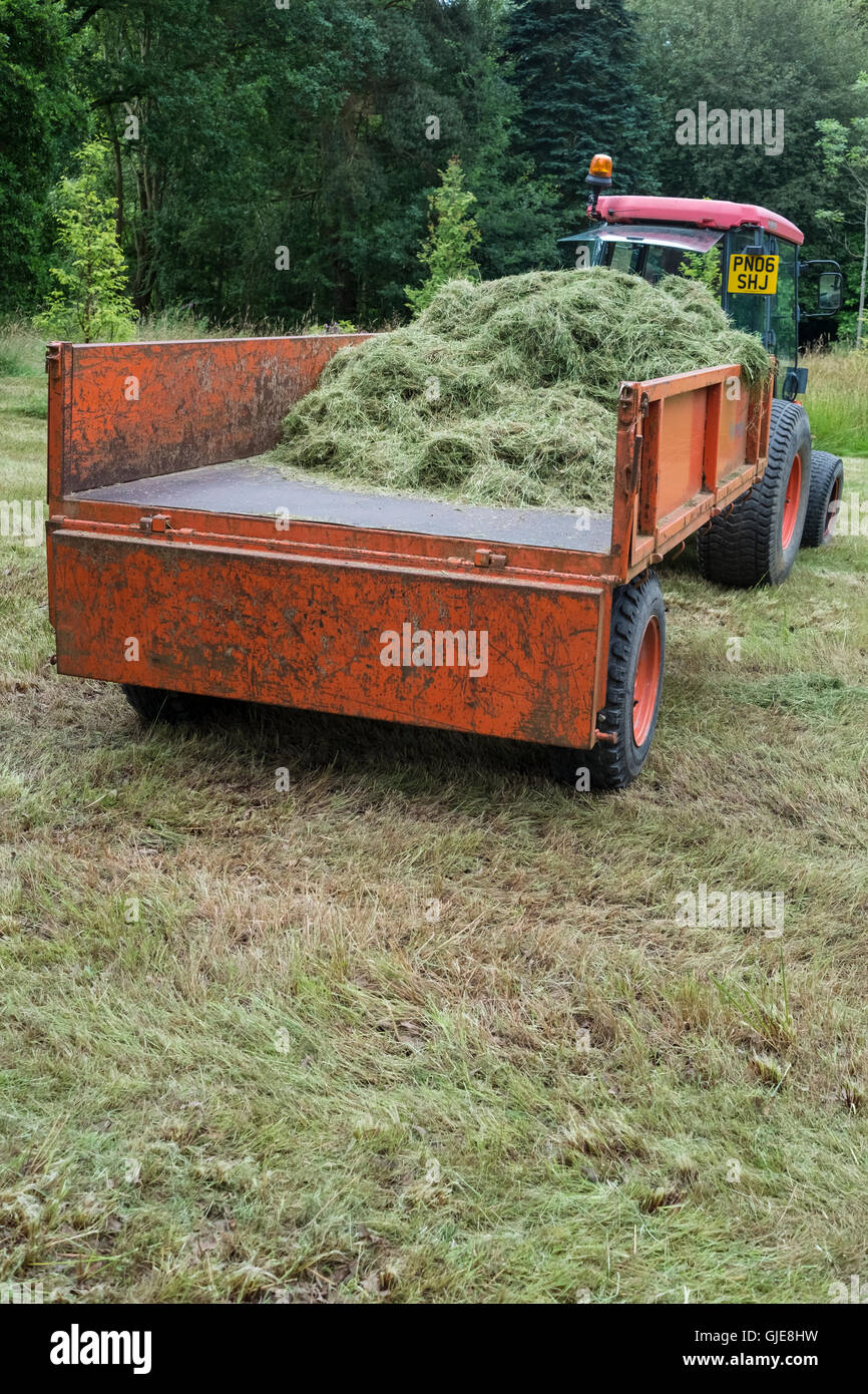 Garden grass clippings loaded onto a tractor trailer. - Stock Image