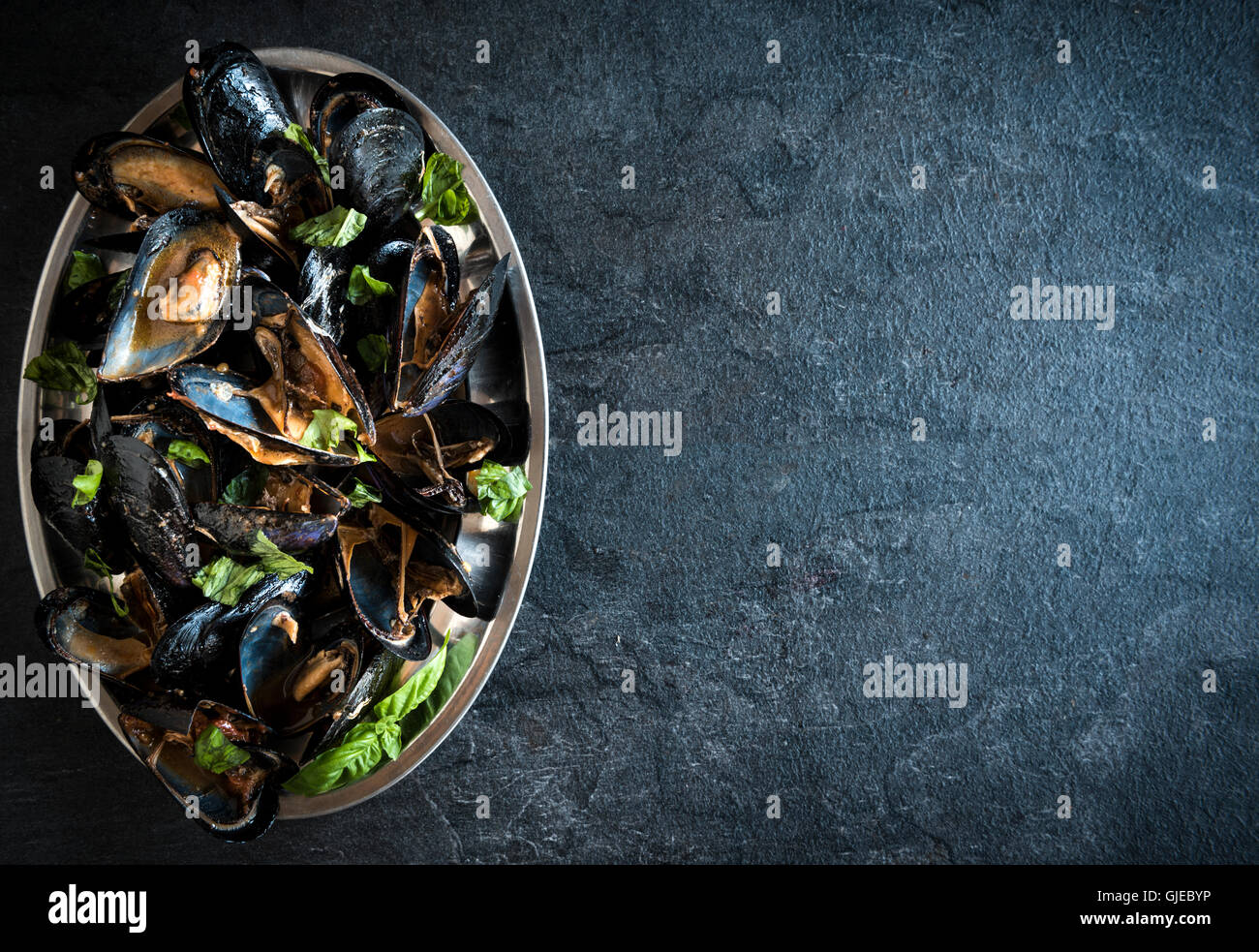 Cooked mussels in the plate,empty space - Stock Image