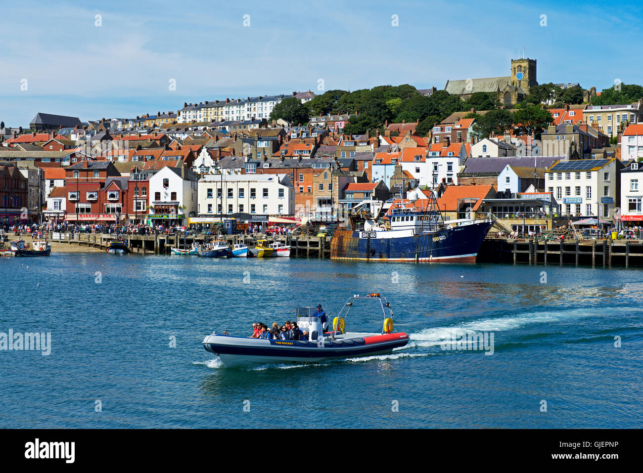 Passenger boat in the harbour, Scarborough, North Yorkshire, England, UK - Stock Image