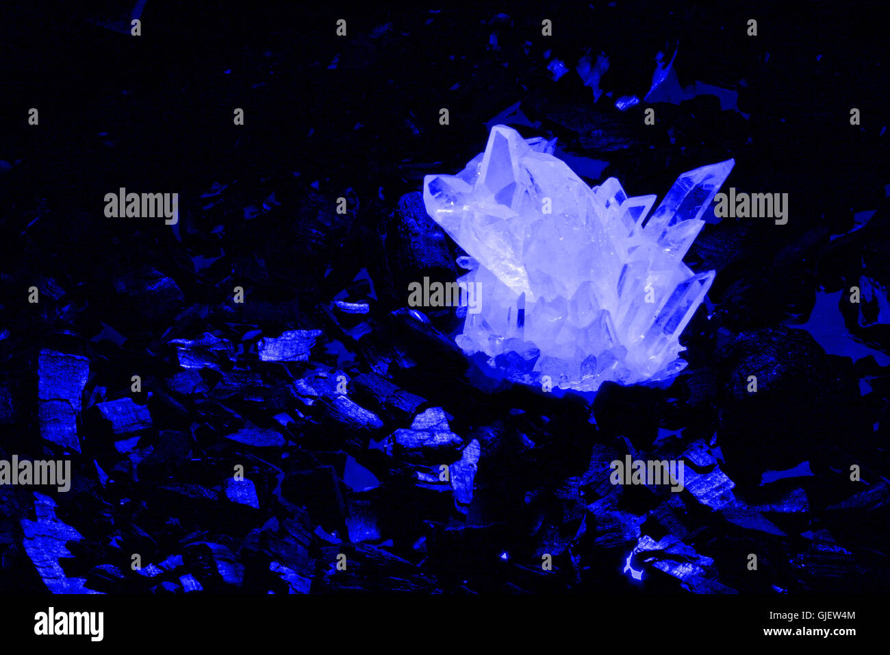 blue cold cure - Stock Image