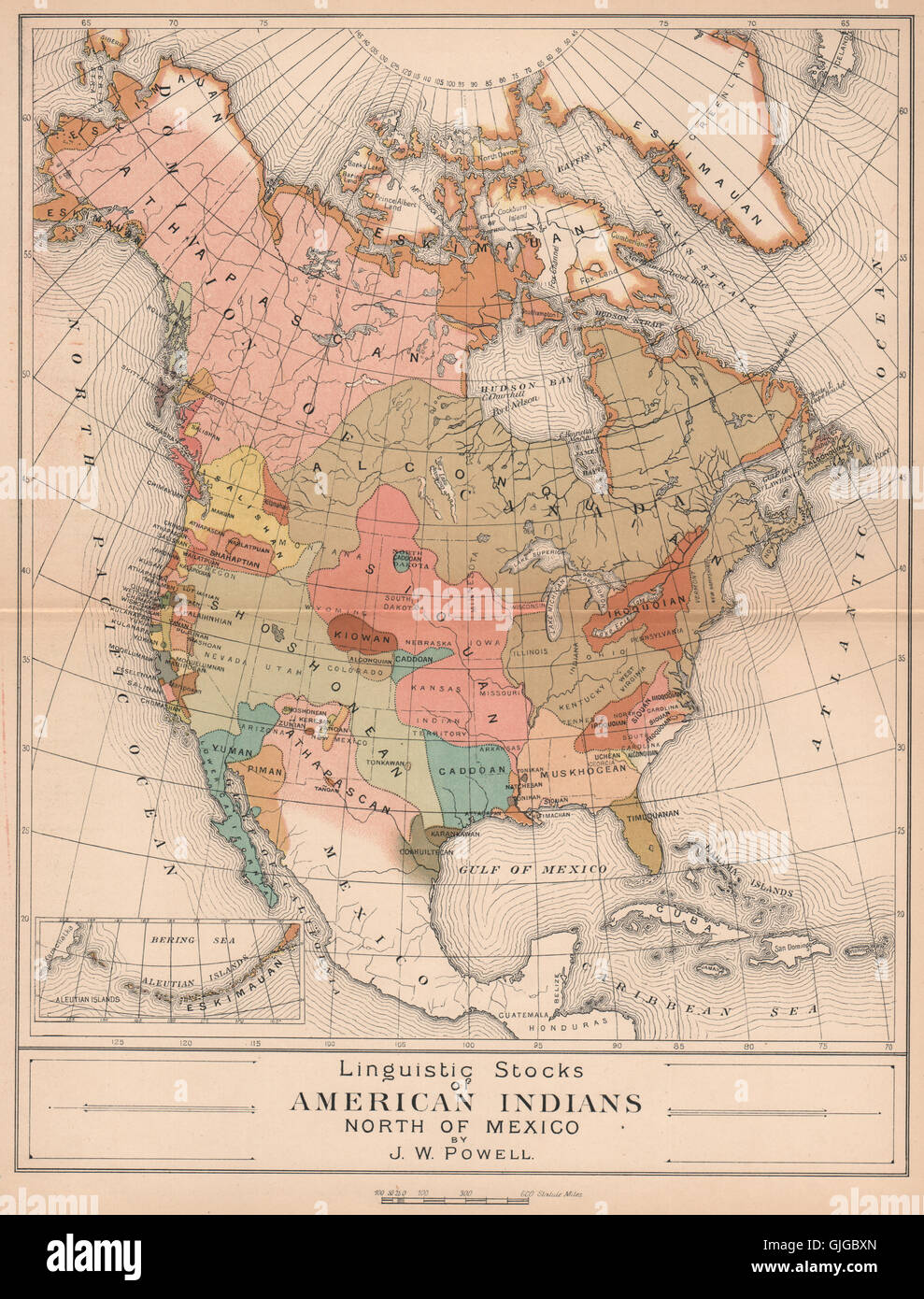 Linguistic Stocks of Native American Indians. North America ...