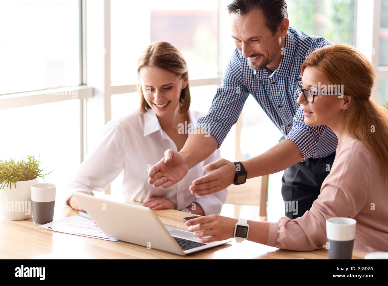 Positive colleagues working on the project - Stock Image
