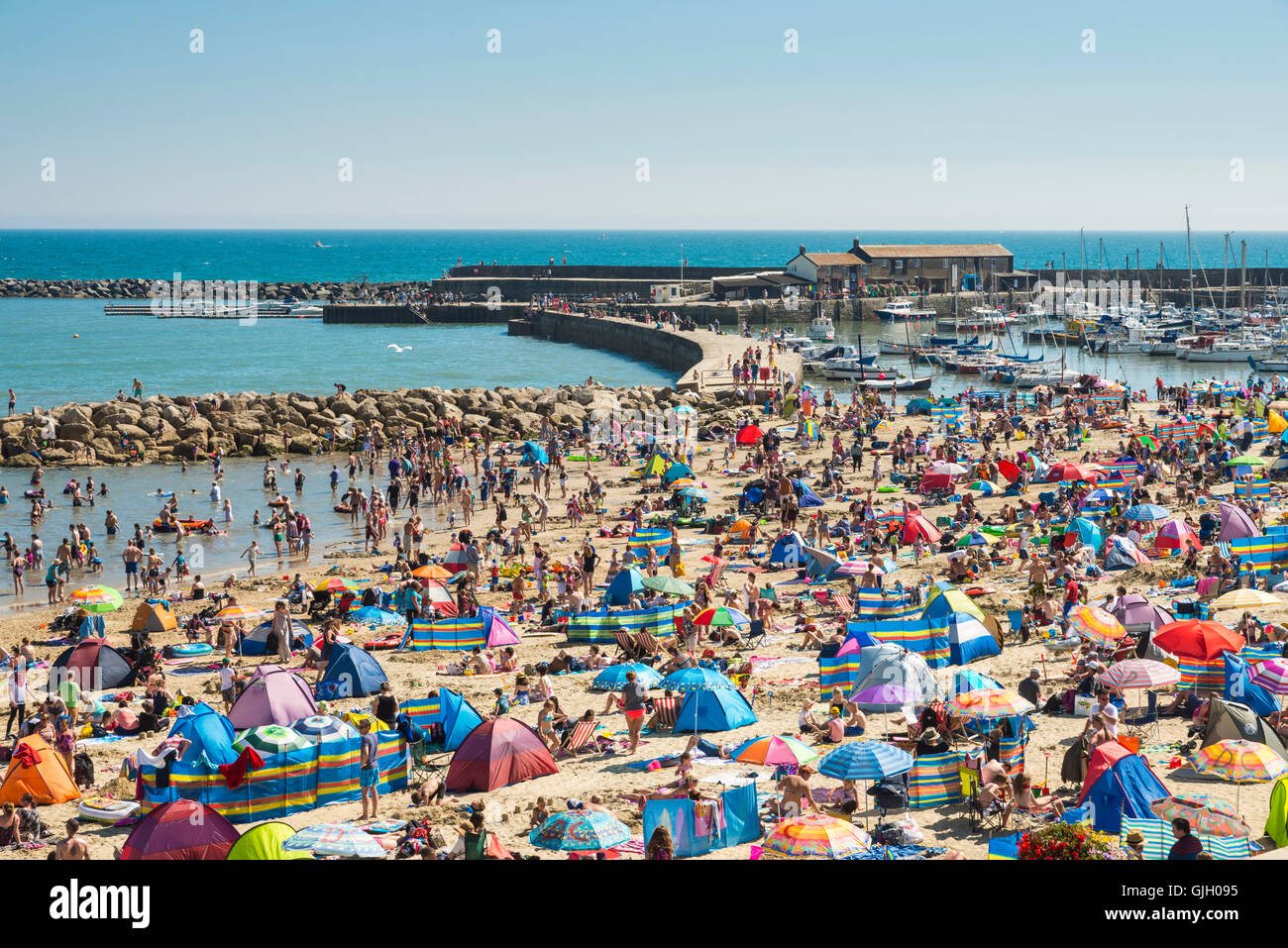Lyme Regis, Dorset, UK. 16th Aug, 2016. UK Weather. Sun seeking holidaymakers pack the beach next to The Cobb Harbour - Stock Image
