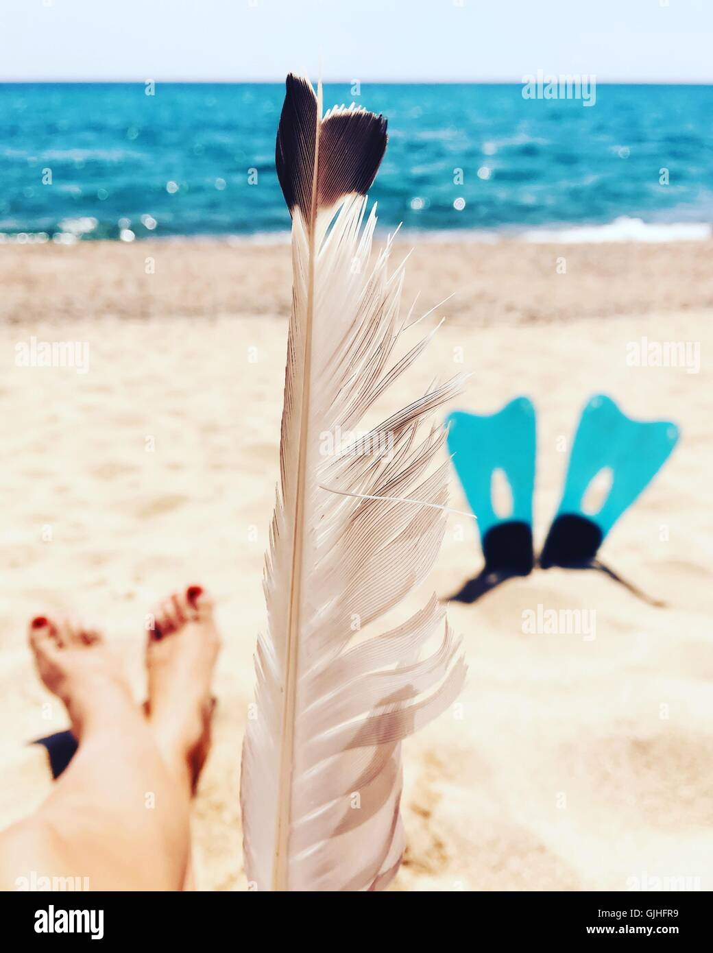 woman's legs, feather and flippers on the beach - Stock Image