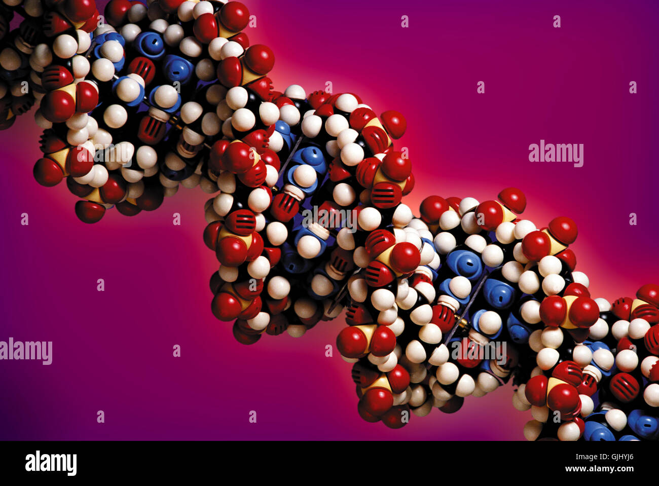 research cell nucleus medicine - Stock Image