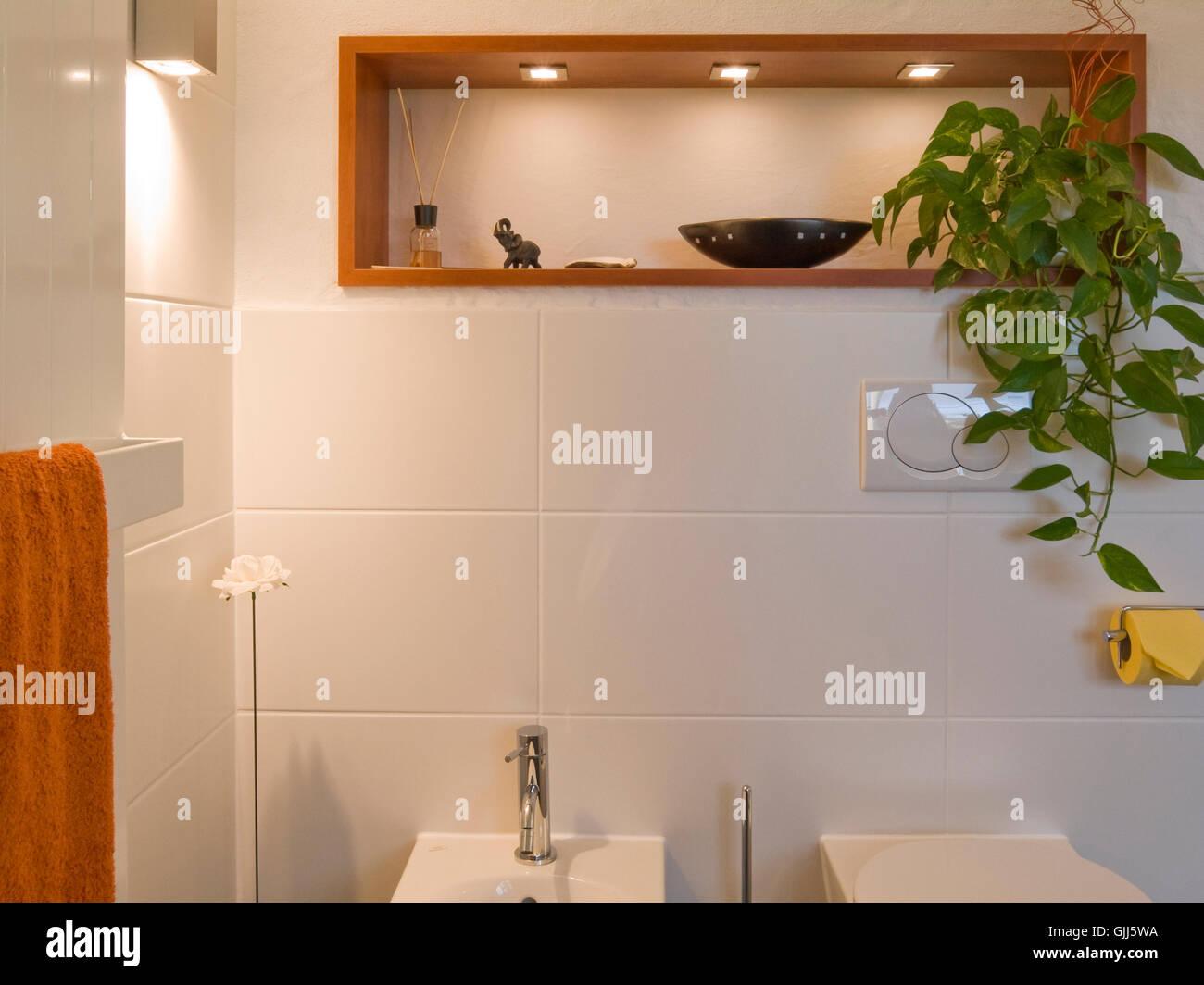 Bad Modern Toilet Bidet Shelf Frontal