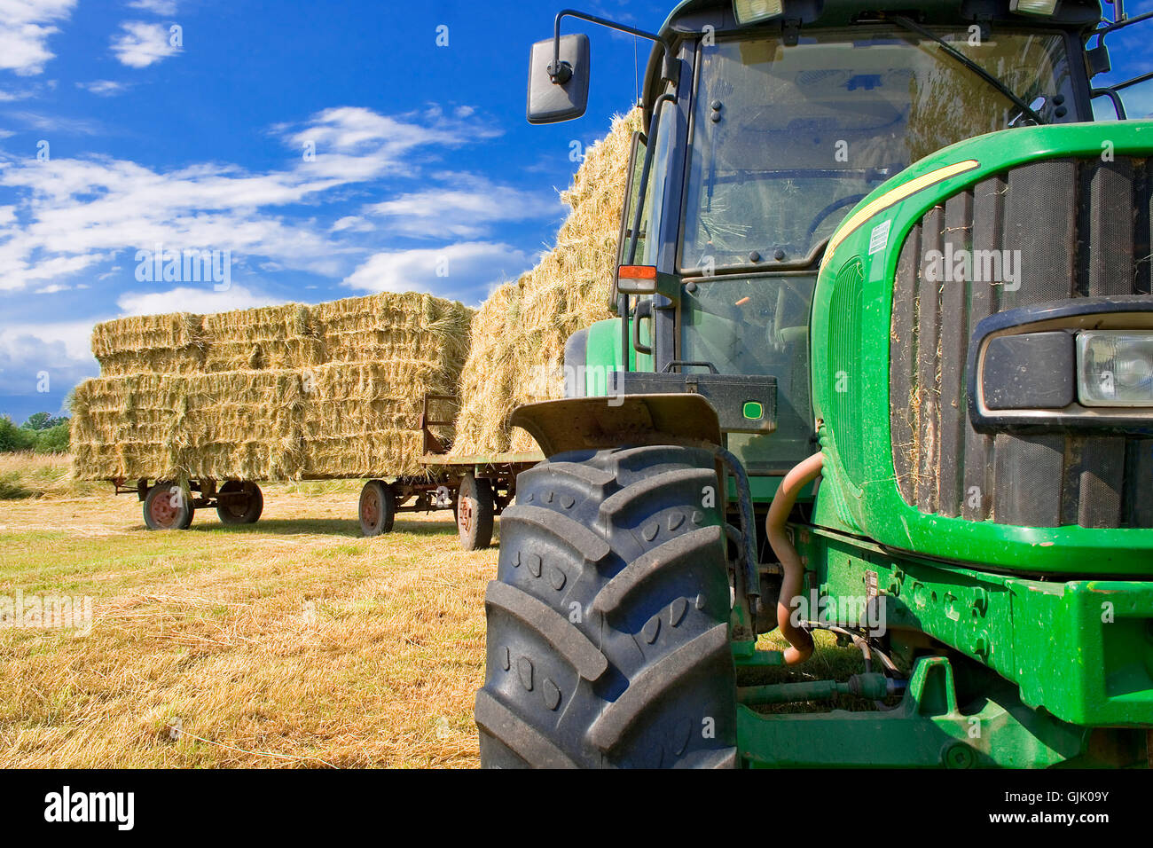 seek hay Stock Photo