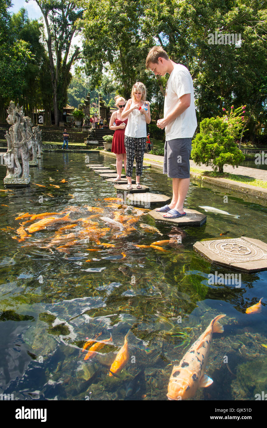 Tirta Gangga Royal Water Garden: Ornamental Fish Ponds Stock Photos & Ornamental Fish Ponds