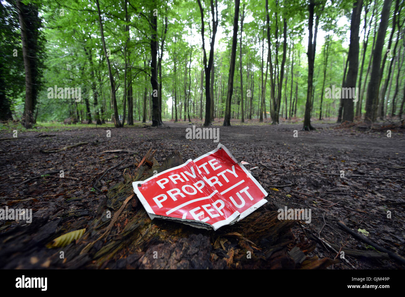 damaged keep out sign in woodland - Stock Image