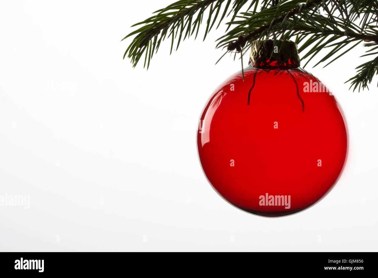bauble on spruce branch - Stock Image