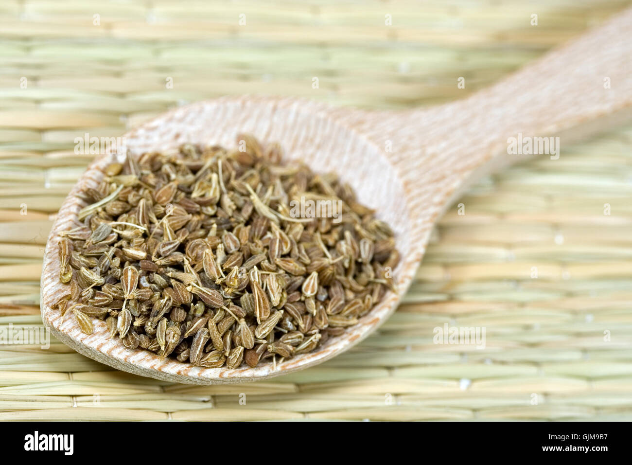 spice spices anise Stock Photo