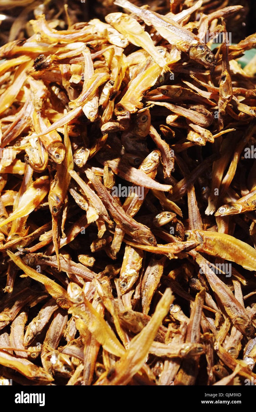 dried fish, anchovy - Stock Image
