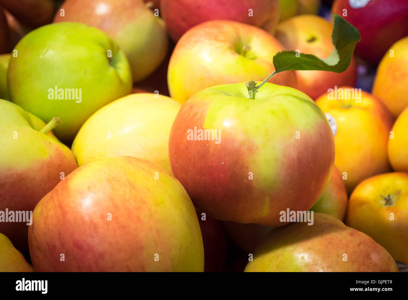 SunCrisp apples for sale at the Granville Island Public Market in Vancouver, British Columbia, Canada. - Stock Image