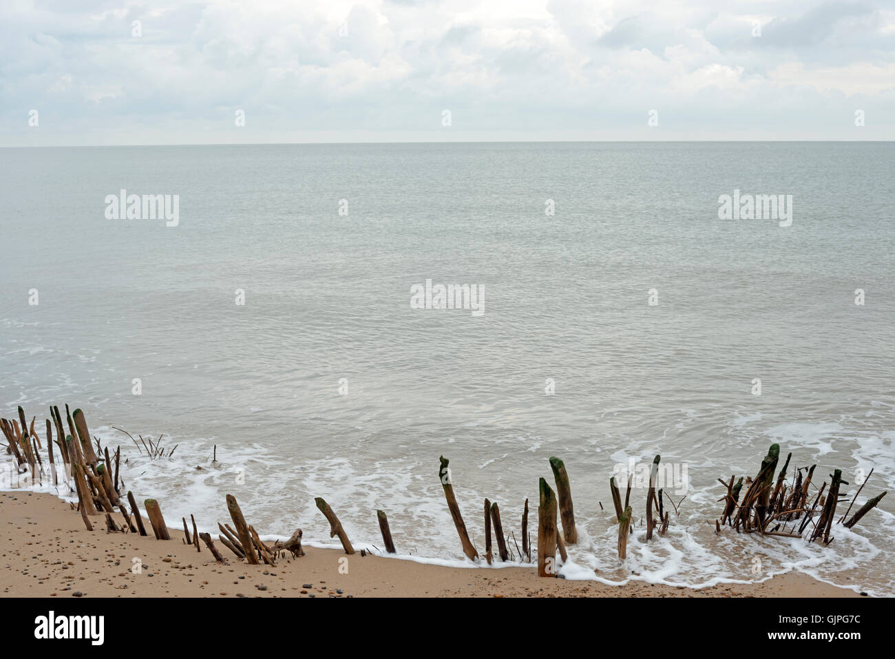 Historic wooden breakwaters or groynes - Stock Image