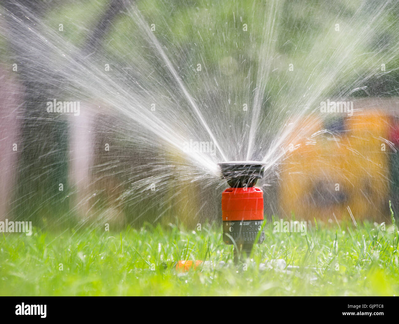 Sprinkler head spraying water on green lawn - Stock Image